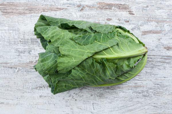 Pamphrey cabbage