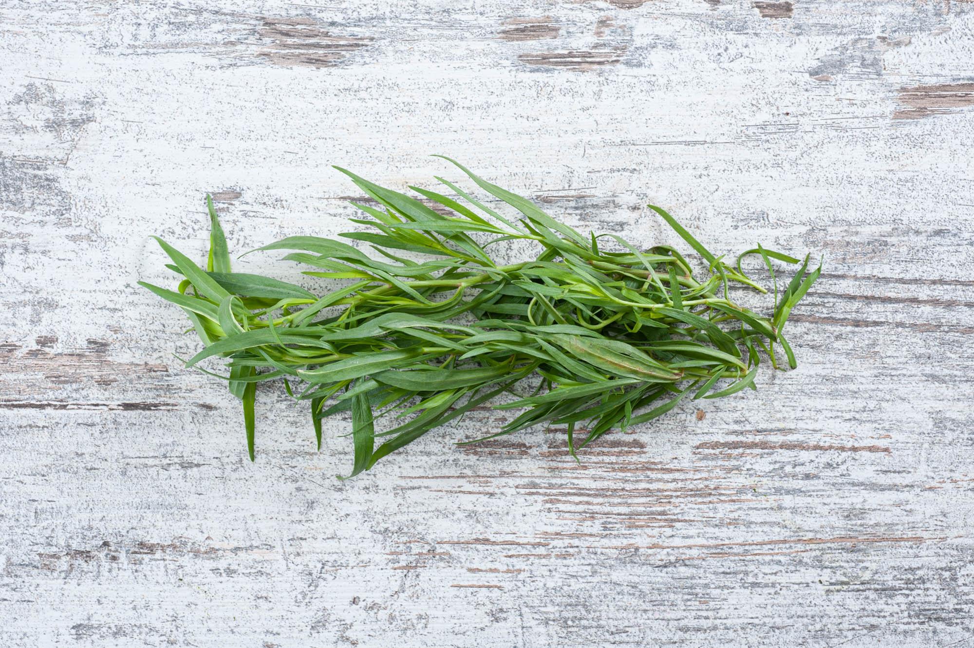 tarragon fresh herb