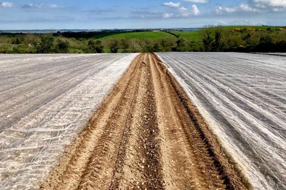 Our Farm — Millbank Farm