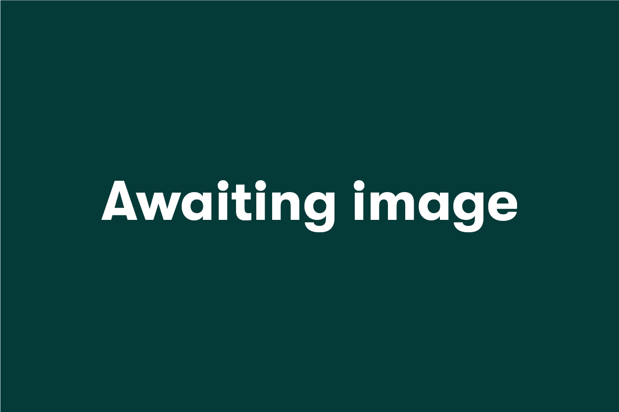 awaiting image default