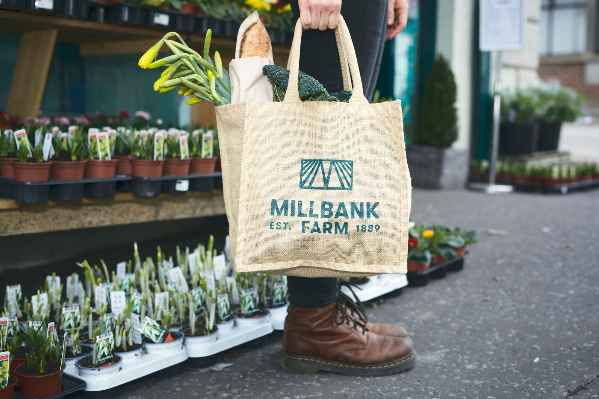 Home — Millbank Farm